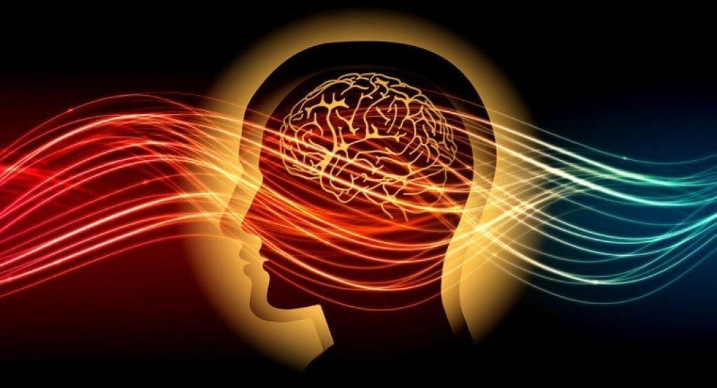 Trance effects on brain