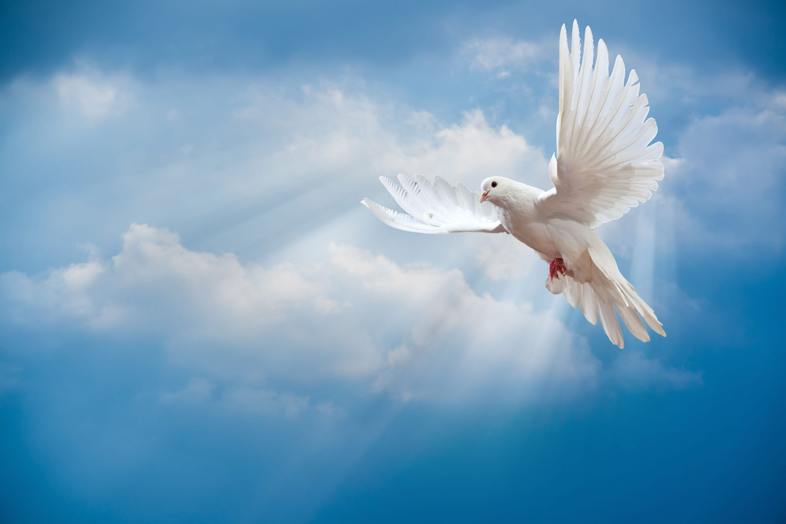 Making peace after death