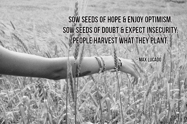 Seeds optimism